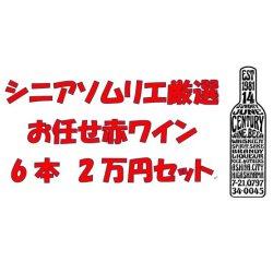 画像1: シニアソムリエ厳選 おまかせ赤ワイン6本2万円セット